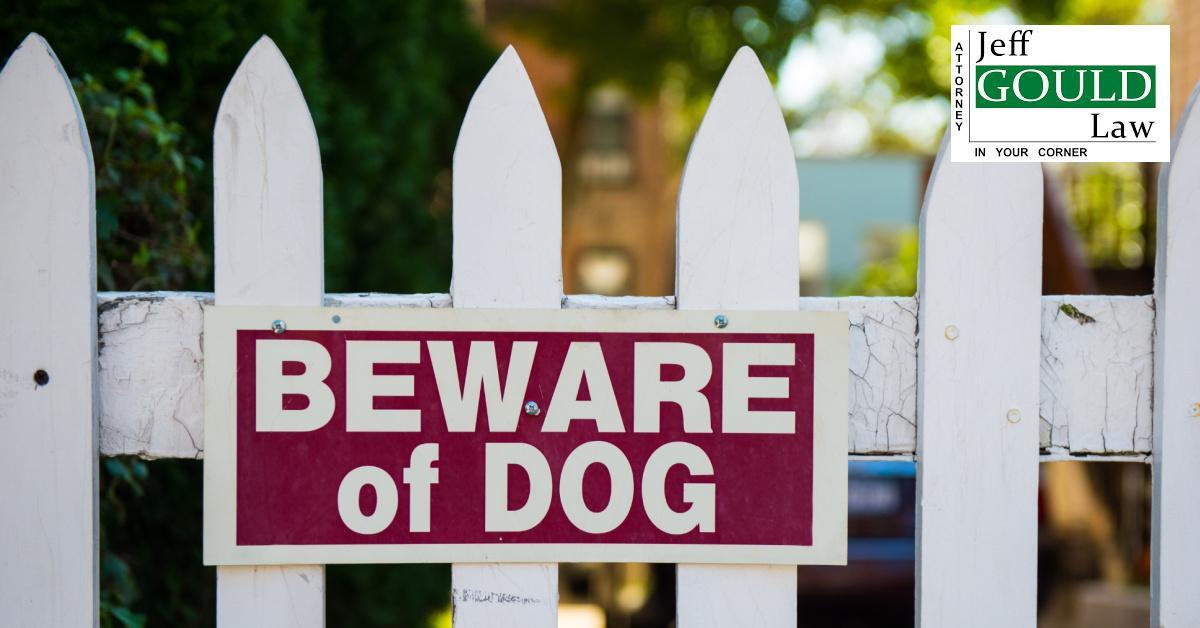 Dog Bite Lawsuit photo